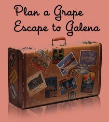 Plan a Grape Escape to Miss Kitty's Grape Escape Wine & Martini Bar in Galena IL